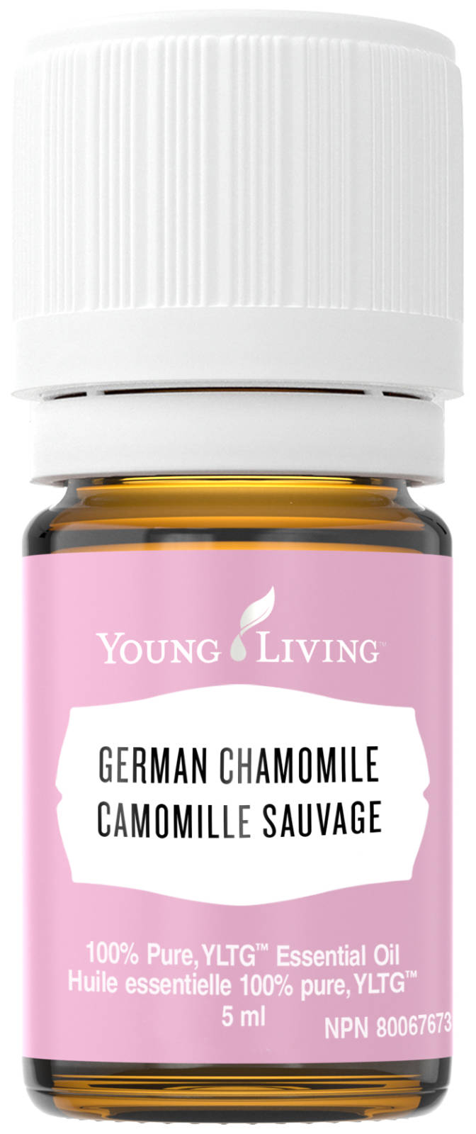 Young Living Canada's German Chamomile Essential Oil