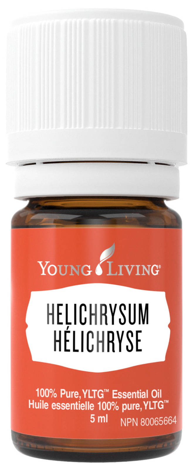 Helichrysum Essential Oil for Acne